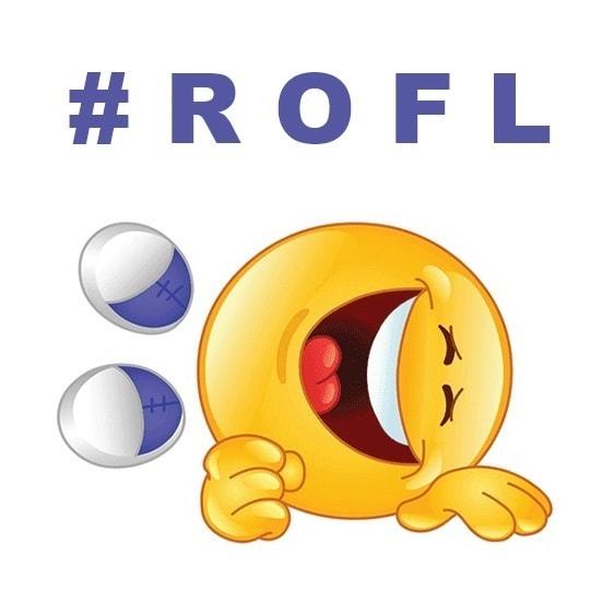 Qué Significa Rofl Definición Significado De Rofl